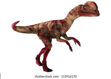 A digital render of a Dilophosaurus Dinosaur.  this dinosaur was a theropod that lived in the early Jurassic time period.
