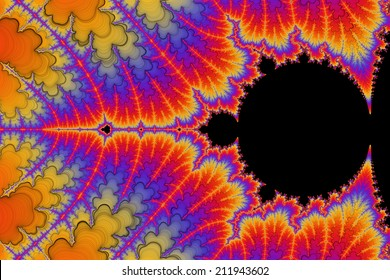Digital visualization of a fractal