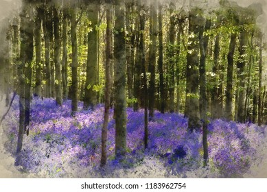 Digital watercolor painting of Beautiful landscape of Spring bluebells in forest