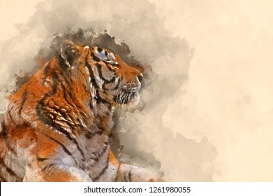 Digital watercolor painting of Beautiful tiger relaxing on warm day