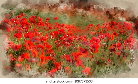 Digital watercolor painting of Poppy field landscape at sunset on South Downs.