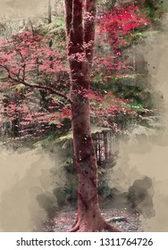 Digital watercolor painting of Stunning false red Autumn Fall trees in Fall color in New Forest in England