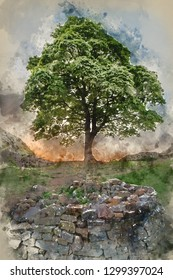 Digital watercolor painting of Stunning landscape image of Sycamore Gap at Hadrian's Wall in Northumberland