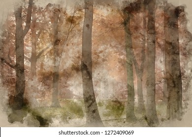 Digital watercolor painting of Stunning vibrant evocative Autumn Fall foggy forest landscape