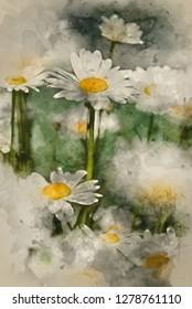 Digital watercolor painting of wild daisy flowers in wildflower meadow landscape