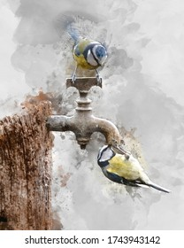 Digital watercolour painting of Beautiful image of Blue Tit bird Cyanistes Caeruleus on wooden post with rusty water tap in Spring sunshine and rain in garden