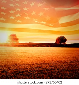 Digitally generated american flag rippling against countryside scene