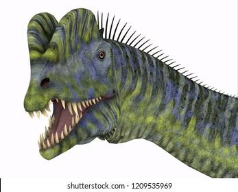 Dilophosaurus Dinosaur Head 3D illustration - Dilophosaurus was a large carnivorous theropod dinosaur that lived in Arizona, USA during the Jurassic Period.