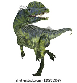 Dilophosaurus Dinosaur Running 3D illustration - Dilophosaurus was a large carnivorous theropod dinosaur that lived in Arizona, USA during the Jurassic Period.