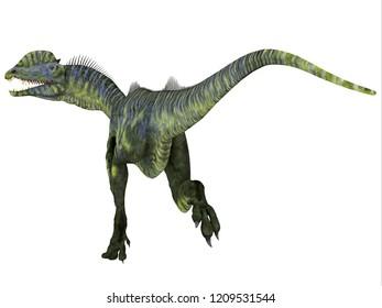 Dilophosaurus Dinosaur Tail 3D illustration - Dilophosaurus was a large carnivorous theropod dinosaur that lived in Arizona, USA during the Jurassic Period.