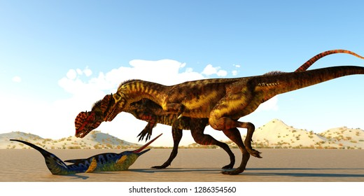 Dilophosaurus Dinosaurs 3D illustration - A Eurohinosaurus marine reptile lays helpless on the tidal flats as the sea goes out as two Dilophosaurus theropod dinosaurs look at him as their next meal.