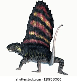 Dimetrodon Permian Reptile Tail 3D illustration - Dimetrodon was a sail-back carnivorous dinosaur that lived in North America and Europe during the Permian Period.