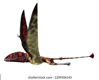 Dimorphodon Reptile Side Profile 3D illustration - Dimorphodon was a carnivorous Pterosaur reptile that lived in England during the Jurassic Period.