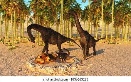Dinosaur Baby Nest 3d illustration - Two Brachiosaurus parents watch their offspring hatch from dinosaur eggs in a nest that they nurtured.