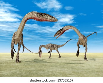 Dinosaur Coelophysis Computer generated 3D illustration