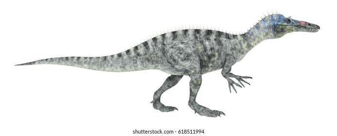 Dinosaur Suchomimus isolated on white background Computer generated 3D illustration