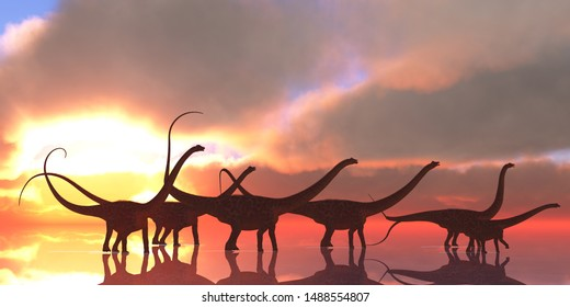 Diplodocus Dinosaur Reflection 3D illustration - A Diplodocus dinosaur herd wades through shallow water on a lake that reflects their shadows and clouds from the sky like a mirror.