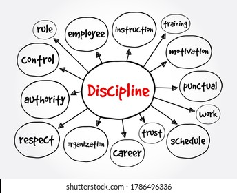 Discipline mind map, business concept for presentations and reports