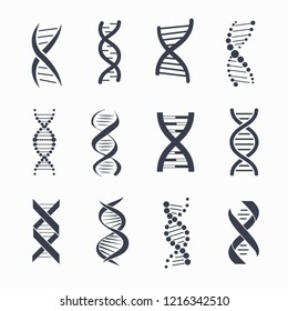 Dna different icons set, a molecule that carries the genetic instructions represented on  illustration isolated on white background