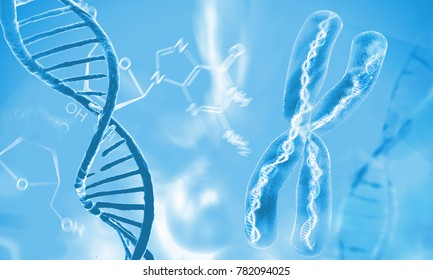Dna double helix molecules and chromosomes, 3d rendering