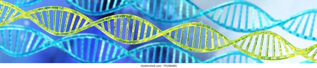 DNA helix, RNA  3d rendering.