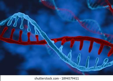 DNA. Helix spiral of 3d polygonal DNA molecule on blue. Medical science, genetic biotechnology, chemical biology, genetic cell concept illustration or background