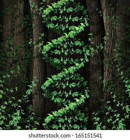 DNA nature symbol as a dark tree forest growing a green vine in the shape of a genetic double helix icon as a metaphor for biological technology and the science of biology in the natural world.