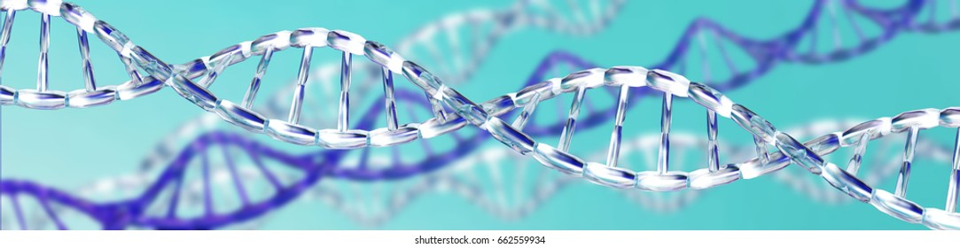 DNA, RNA, Chromosome 3D rendering