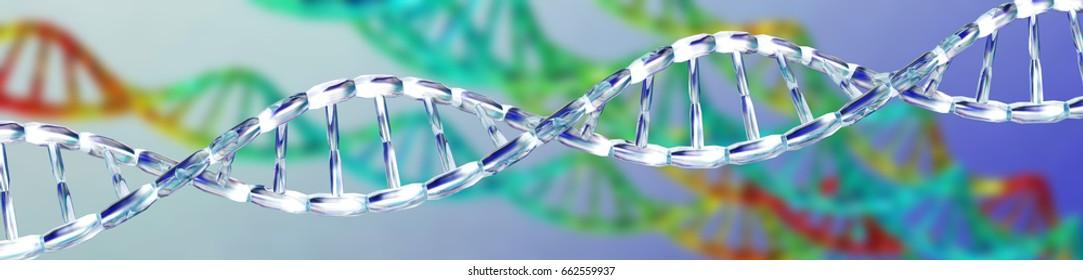 DNA, RNA, Chromosome 3D rendering