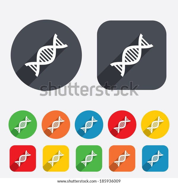 DNA sign icon. Deoxyribonucleic acid symbol. Circles and rounded squares 12 buttons.