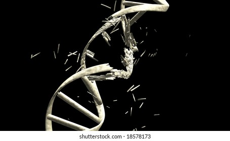 DNA string with clipping path,3d model with bone material