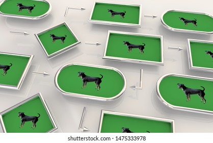 Dog Animal Pet Process Map Chart Network Connections 3d Illustration