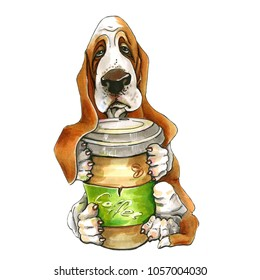 A dog of Basset Hound breed. On isolated white background. pappy. A dog with a glass of coffee in his paws.