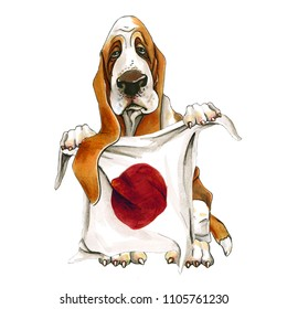 3279c1daa84 A dog of breed basset hound. Basset holds the flag of the Japan in paws