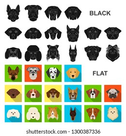 Dog breeds flat icons in set collection for design.Muzzle of a dog bitmap symbol stock web illustration.