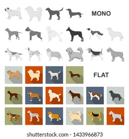 Dog breeds flat icons in set collection for design.Dog pet bitmap symbol stock web illustration.