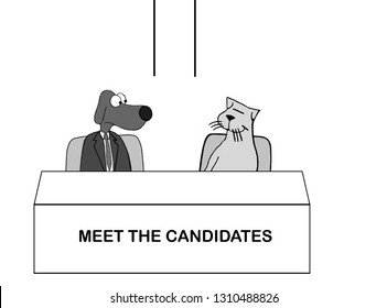 Dog and cat as candidates prepare for debate