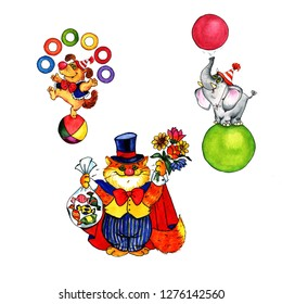 dog, cat and elephant in the circus, colorful watercolor, set of funny animals - illustration