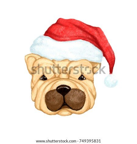 e49f52c267d6b dog dressed for christmas csp53203461. cheerful dog wearing a ...