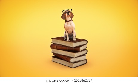dog with glasses and books. 3d rendering