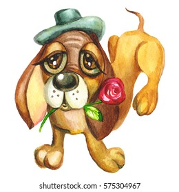 dog in a hat with a rose