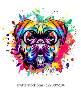 dog head with eyeglasses and creative abstract elements on dark background
