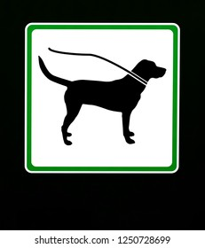 Dog on leash in this area. Restriction sign with copy space.
