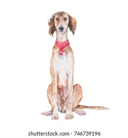 Dog party set. Watercolor painting isolated on white background.