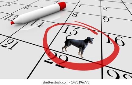 Dog Pet Animal Calendar Day Date Event Training Class 3d Illustration