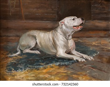 the dog is waiting for its owner. Emotional Oil Painting Art