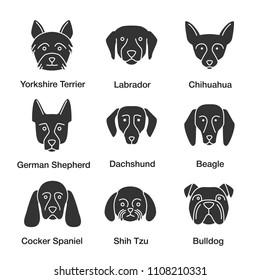 Dogs breeds glyph icons set. Yorkshire Terrier, Labrador, German Shepherd, Chihuahua, dachshund, beagle, Cocker Spaniel, Shih Tzu, English Bulldog. Silhouette symbols. Raster isolated illustratio