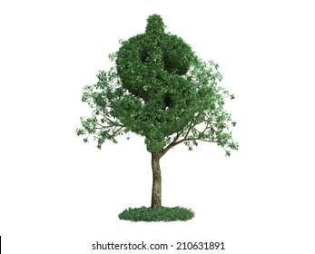 dollar symbol tree