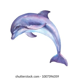 Dolphin jumping isolated on white backround watercolor illustration