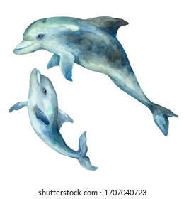 Dolphin mom with cub on a white background, hand drawn watercolor illustration.